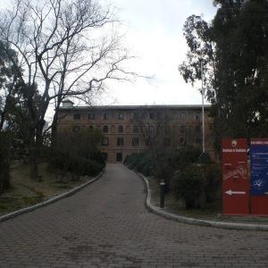 Felipe VI deja de ser presidente de honor de la Residencia de Estudiantes